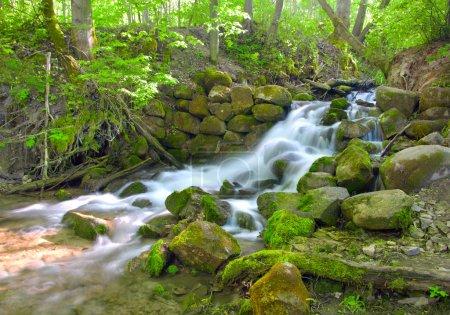 Beautiful cascade waterfall in green for