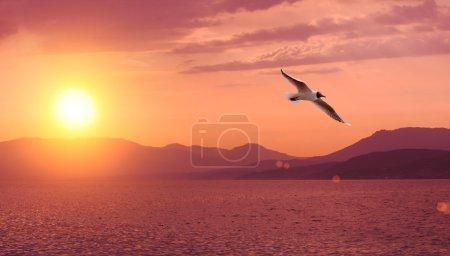 Sunset, sea and mountain