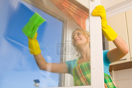 Photo pour Femmes nettoyant une fenêtre 4 - image libre de droit