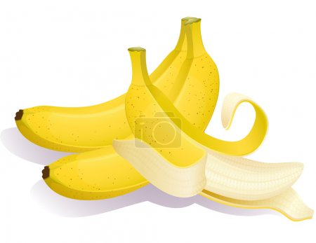 Illustration for Vector illustration - Three ripe bananas - Royalty Free Image