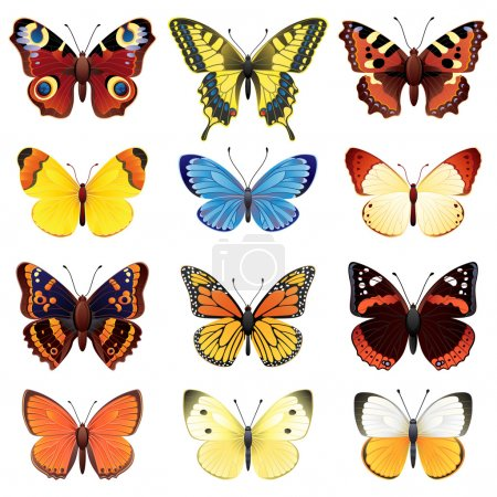 Ilustración de Vector illustration - conjunto de iconos de mariposa - Imagen libre de derechos