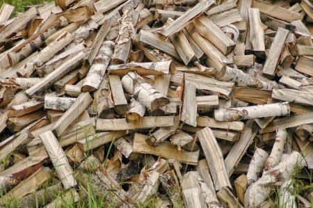 Photo pour Gros tas de bois de chauffage bouleau - image libre de droit