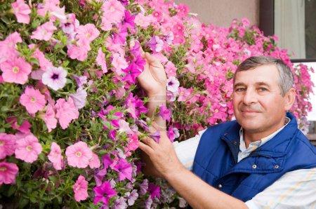 Photo pour Fleuriste homme Senior travaillant dans le jardin - image libre de droit
