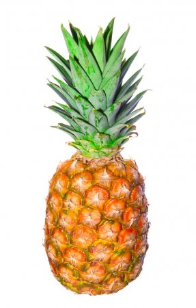 Photo for Pineapple isolated - Royalty Free Image