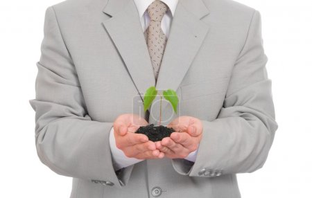 Businessman holding green plant isolated