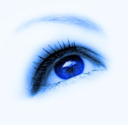 Photo for Blue eye - Royalty Free Image