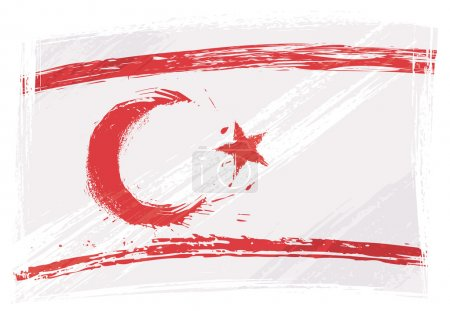 Northern Cyprus national flag created in grunge st...