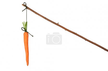 Photo for Fresh red carrot hanging on white background - Royalty Free Image
