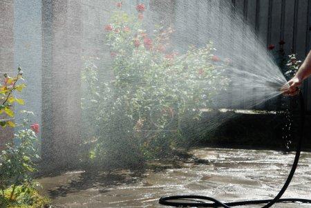 Photo pour Main de jardinier tenant le tuyau d'arrosage et d'arrosage - image libre de droit