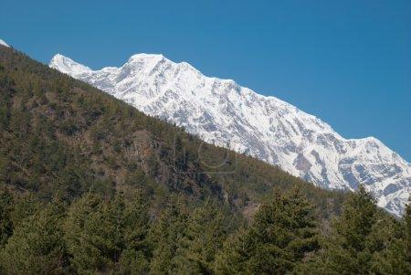 Snowy Tibetan mountains