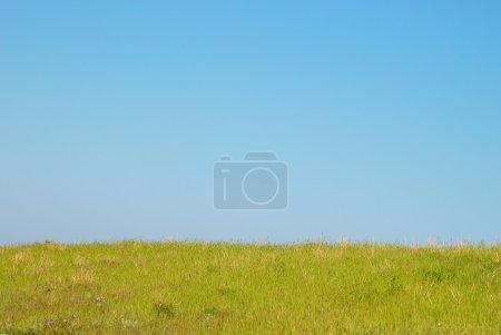 Photo pour Herbe verte avec ciel bleu et nuages . - image libre de droit