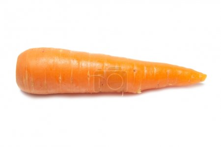 Photo for Orange carrot isolated on the white background - Royalty Free Image