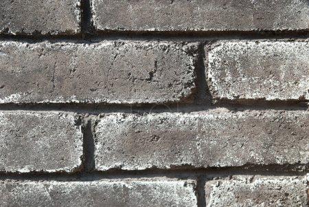 Foto de Pared de ladrillo gris grunge puede utilizarse para el fondo - Imagen libre de derechos