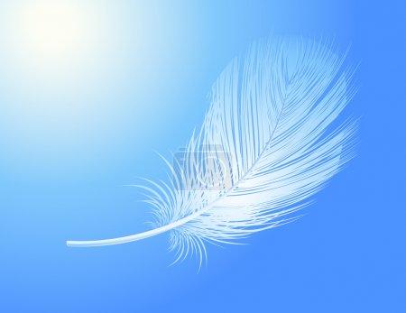 Illustration pour Plume, illustration vectorielle - image libre de droit