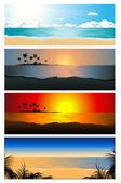 Tropical background set vector illustration