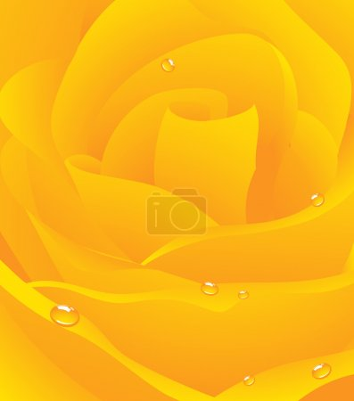 Illustration for Yellow beautiful rose background, vector illustration - Royalty Free Image