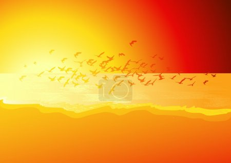 Flock of birds above the sea in sunset