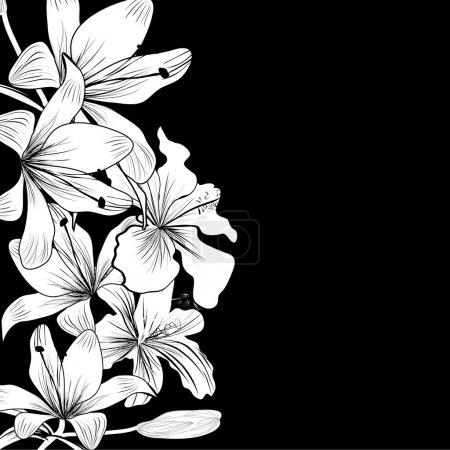 Illustration for Black and white background with white flowers - Royalty Free Image