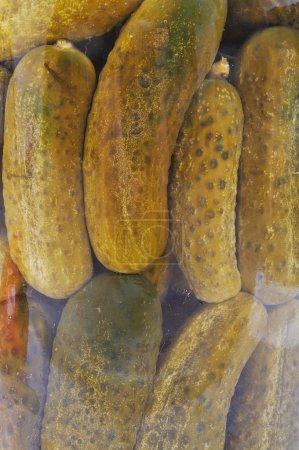 Prepared vegetables for winter