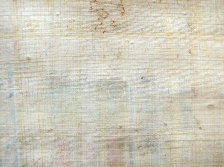 Papyrus pattern