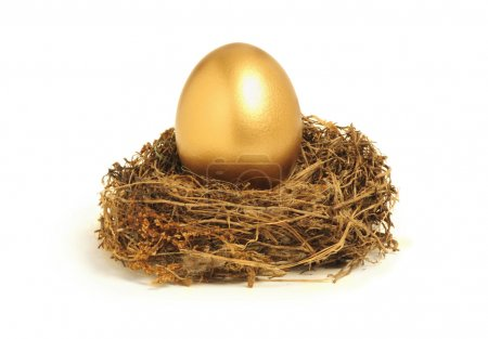 Photo for Golden egg in a nest representing retirement savings or security - Royalty Free Image
