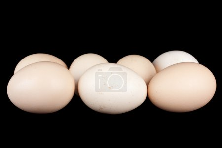 Photo for Few chicken eggs over the black background - Royalty Free Image