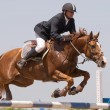 Chestnut stallion and the rider jumping on horse jumping show