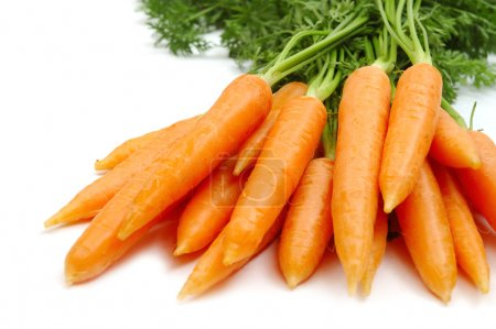 Photo for Bunch of carrot isolated on white background - Royalty Free Image