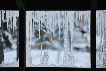 Ice on window view