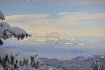 Winter landscape , mountain landscape