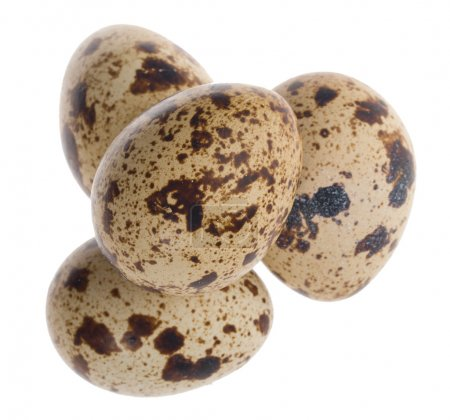 Four quail eggs in pyramid