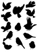 Set of silhouettes cheerful spring birds