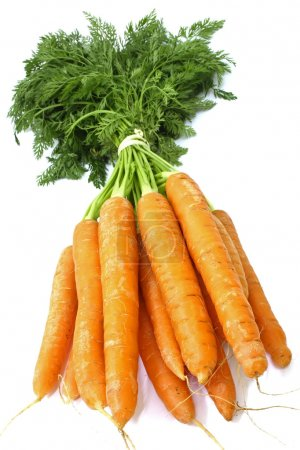 Photo for Carrot fresh vegetable group on white background - Royalty Free Image