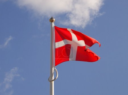 Photo for Denmark flag on wind - Royalty Free Image