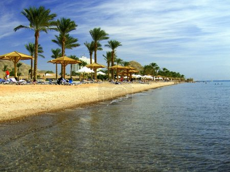 Photo for Beach with palms and umbrellas in Egypt, Red Sea - Royalty Free Image