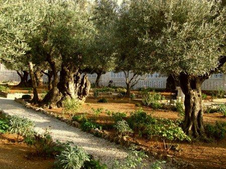 Photo for Jerusalem, Israel - Royalty Free Image