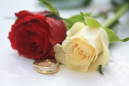 Photo for A wedding band and a diamond solitaire engagement ring with two roses on the background, a red one and a white one - Royalty Free Image