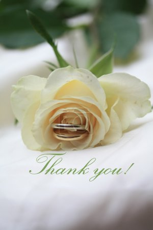 White rose card - Thank you