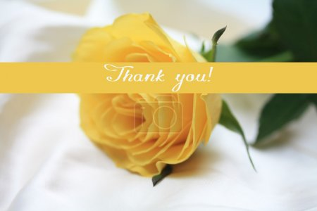 Yellow rose card - thank you