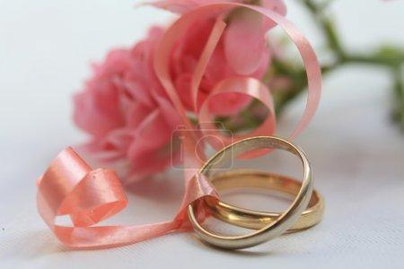 Photo pour Bandes de mariage et roses roses - image libre de droit