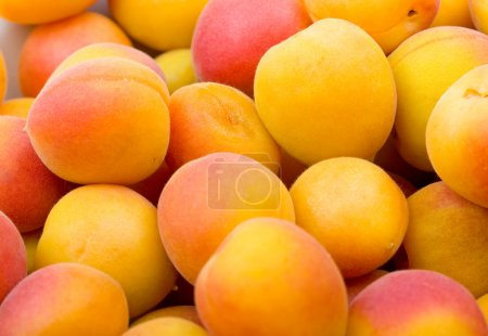 Fresh natural apricot to background