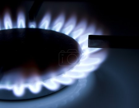 Photo pour Les flammes d'un gaz bleuâtres cuisinière brûleur - image libre de droit