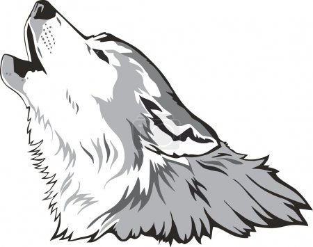 Illustration for Wolf head as a simbol, vector illustration. - Royalty Free Image