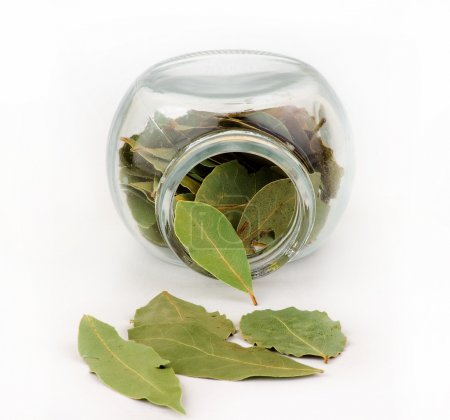 Bay leaf and glass