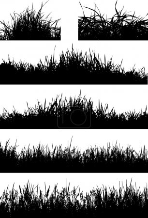 Illustration for Many silhouette of grass bushes - Royalty Free Image