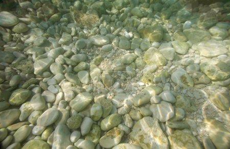 Photo pour Galets pierres sous l'eau sur un fond de la mer. fond marin - image libre de droit