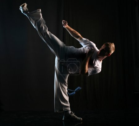 Photo for Man in dark practice martial art - high kick - Royalty Free Image