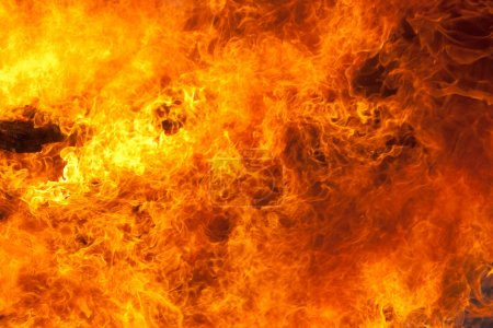 Photo for Burning fire closeup background - Royalty Free Image