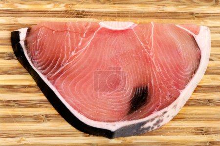 Shark Fillet