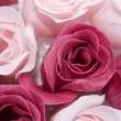 Pink and red roses...